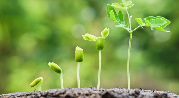 5 Practical Ways to Grow inLove